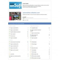 Example of a detailed SEO report
